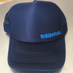 セキスイハイム帽子